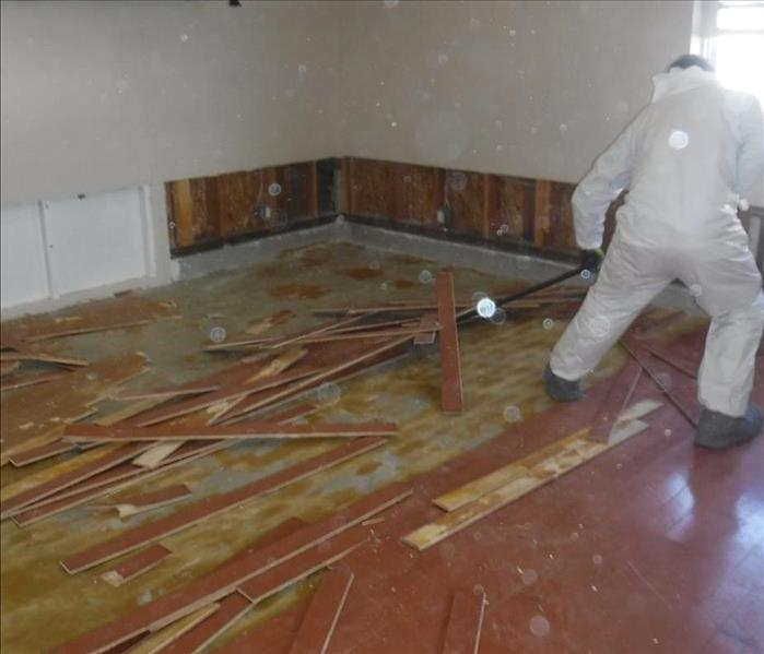 Water Damage & Hardwood Floors