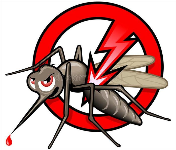 Cancel sign over mosquito