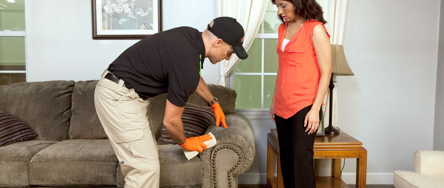 Moorpark, CA carpet upholstery cleaning